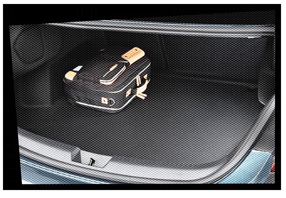 Buchen-Renault Megane